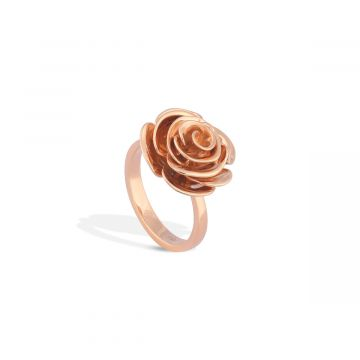 Rose Love You